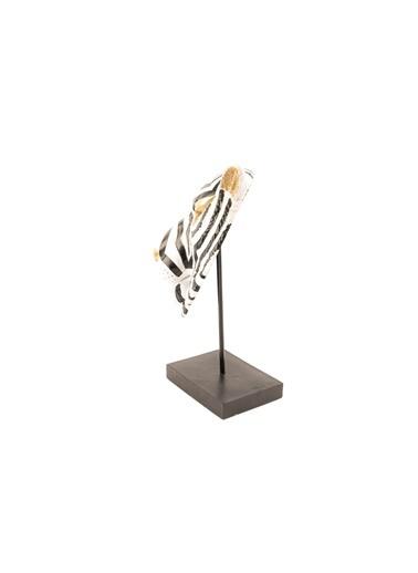 Mikasa Moor Biblo Renkli